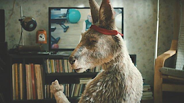 die känguru chroniken.jpg
